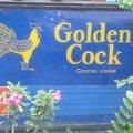 Golden Cock